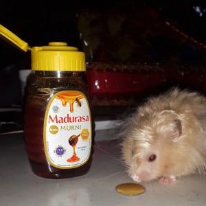 gambar review ke-4 untuk Madurasa Murni